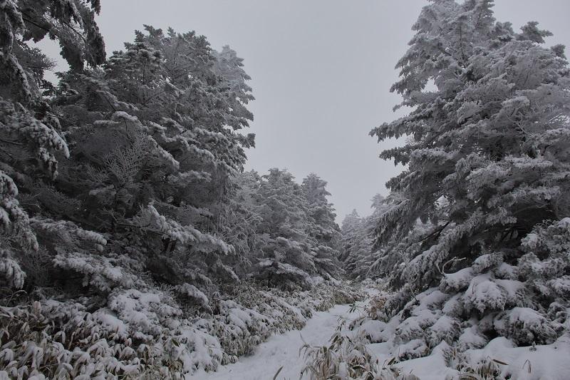 2019北横岳 (6)