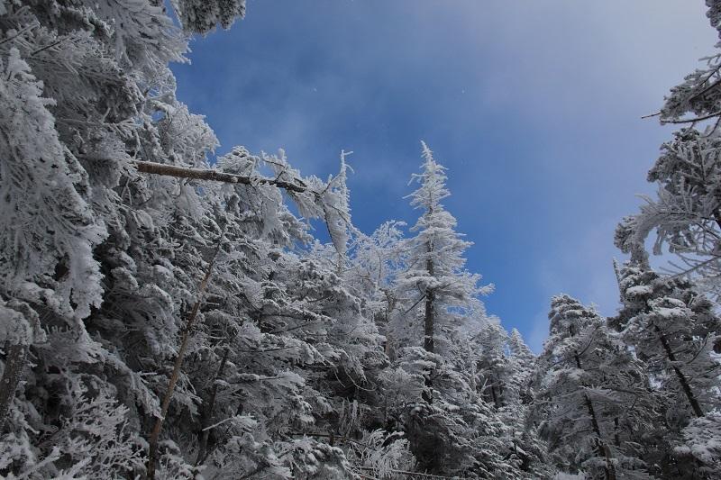 2019北横岳 (8)