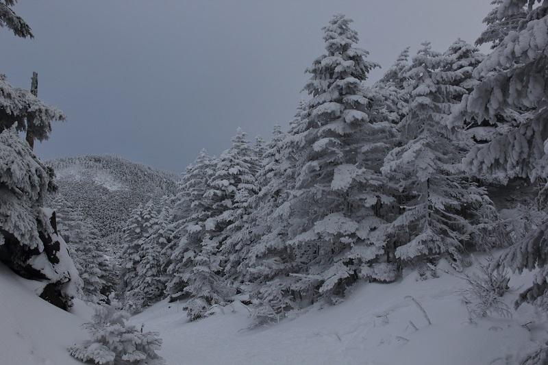 2019北横岳 (13)