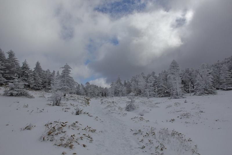 2019北横岳 (15)