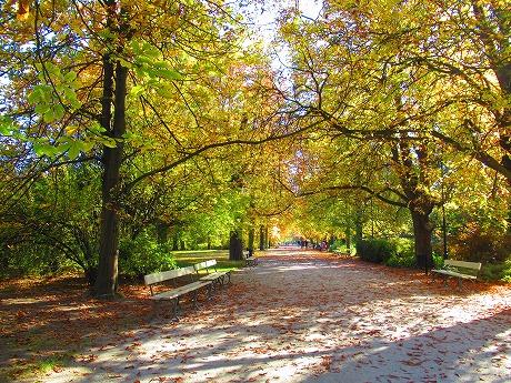ワジェンキ公園歩道1