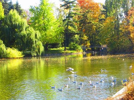 ワジェンキ公園池
