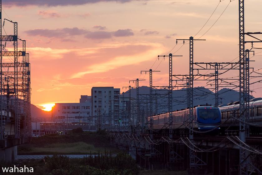 290903ichikawa-1.jpg