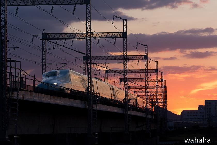290903ichikawa-2.jpg