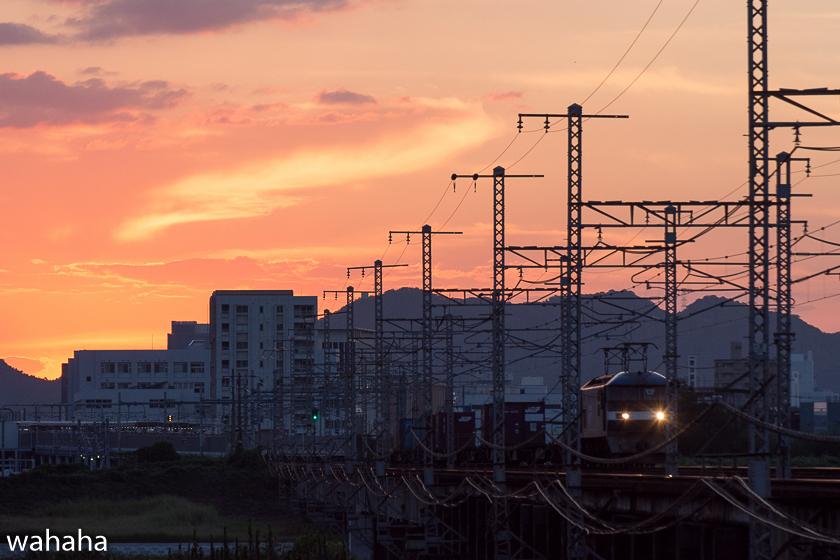 290903ichikawa-3.jpg