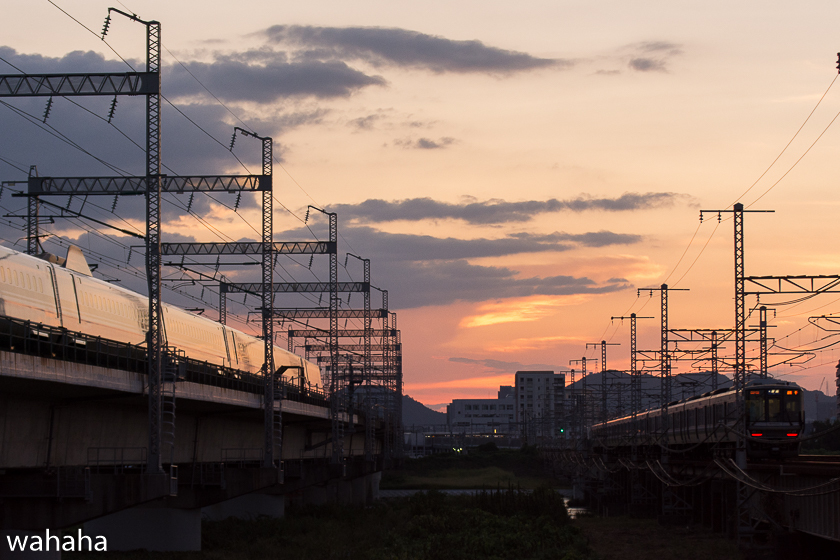 290903ichikawa-4.jpg