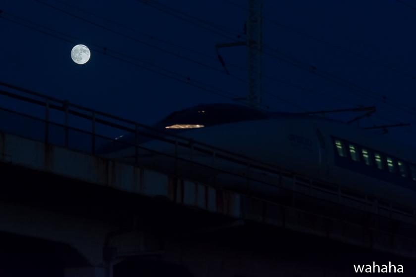 291004kanagasaki-2.jpg