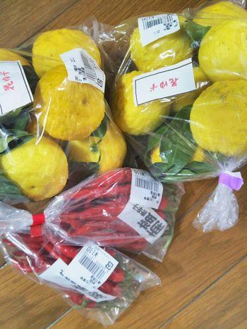 買った柚子と南蛮