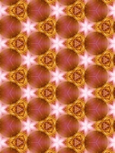 171105_153540_ed.jpg