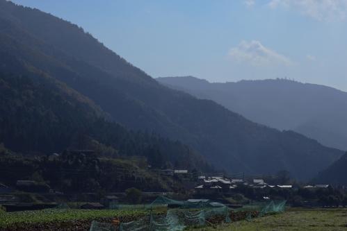 oohara_river_17_11_15_8.jpg