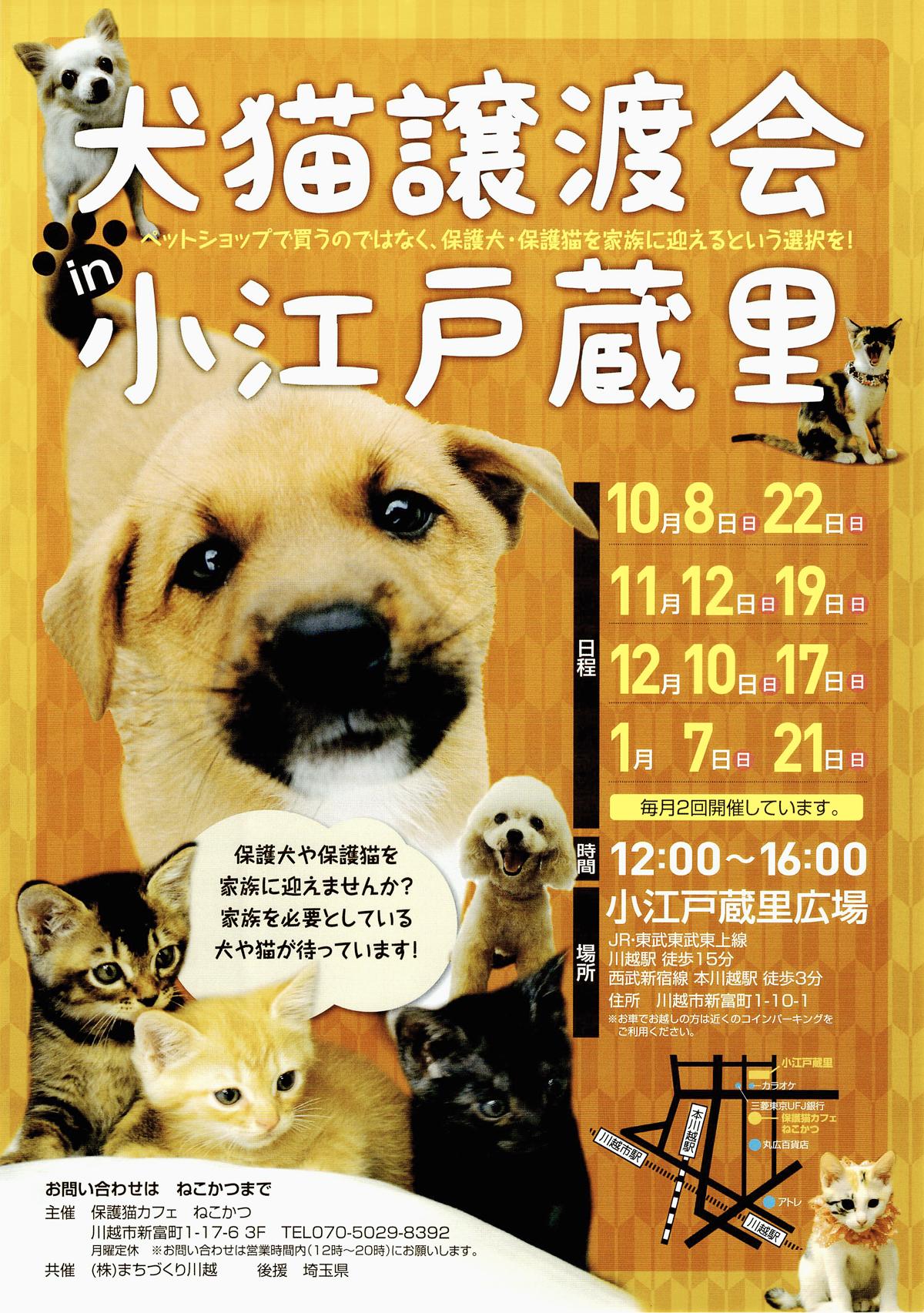 2017_11-2018_1-kawagoe-chirashi.jpg