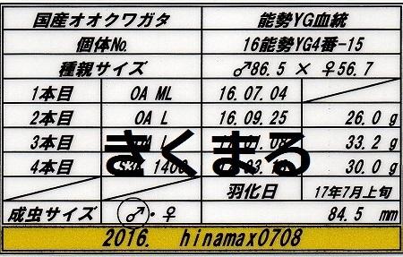 hinamax845管理票
