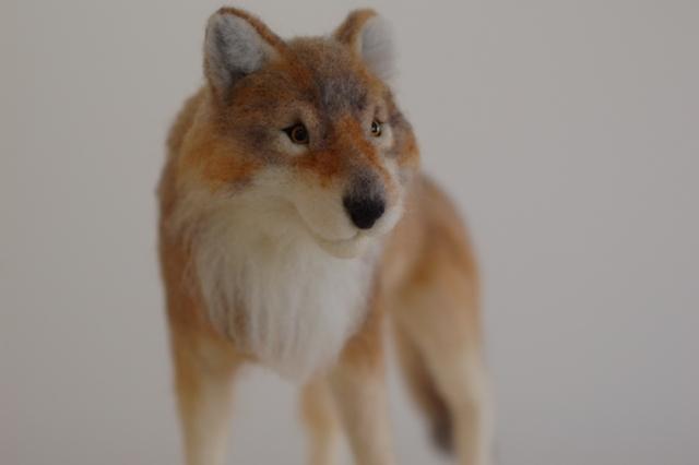 オオカミ展2017ロボ