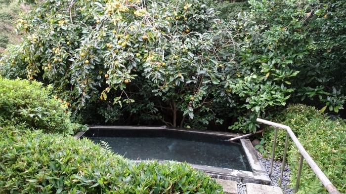 風呂 (8)