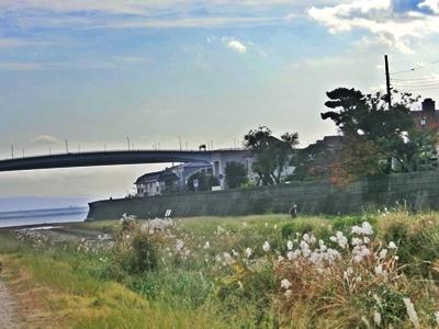 芦屋川河口2